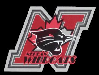 n-wildcats-logo